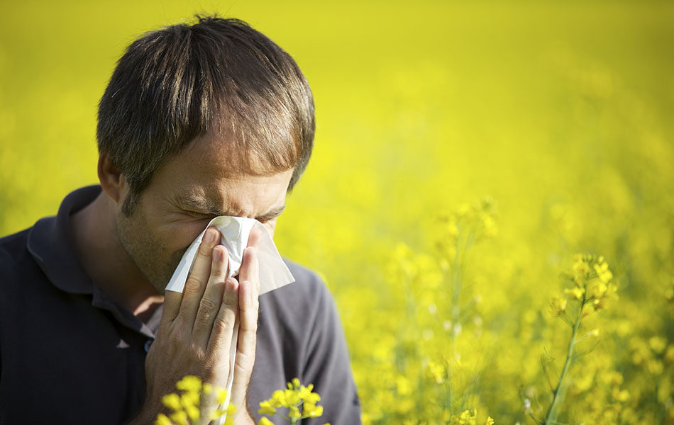 How To Get Rid Of Allergies – 15 Ways For Getting Rid Of Allergies